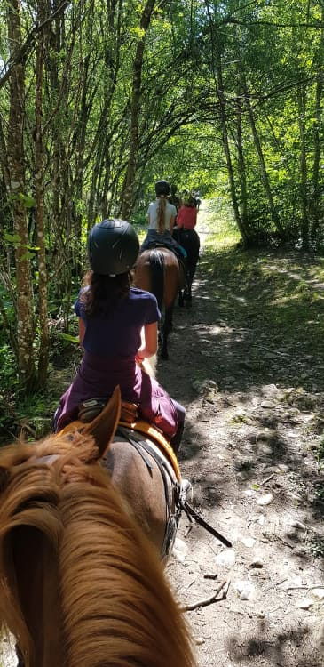 Enfants faisant une blade à cheval dans la forêt pendant un camp d'équitation à Château-d'Oex - Ecole d'équitation Jean Blatti